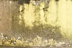 Grunge wall of the old house. Textured background Royalty Free Stock Photography