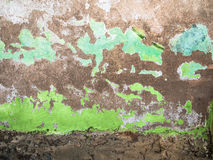 Grunge wall. With peeling green paint - Brazil Stock Photos