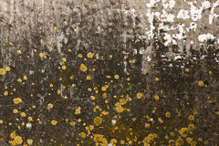 Grunge wall texture Royalty Free Stock Images