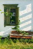 Grunge wall with wild grape leaves and bench Royalty Free Stock Photos
