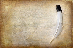 Grunge wallpaper with eagle feather Royalty Free Stock Image