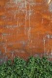Grunge Wandhintergrund Stockbilder