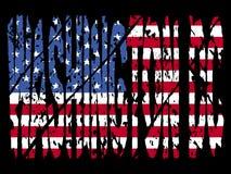 Grunge Washington DC with flag Royalty Free Stock Photography