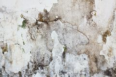 Grunge weathered concrete wall background Stock Images