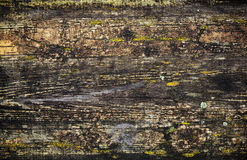 Grunge wet wooden surface background texture Stock Image