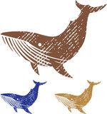 Grunge Whale vector Stock Image