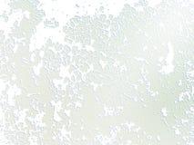 Grunge04white Arkivbild