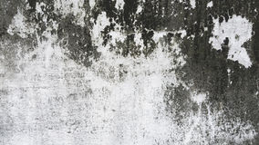 Grunge white and grey cement wall texture background. Stock Photography