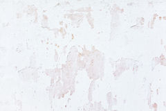 Grunge white painted background wall. Textures Royalty Free Stock Photos