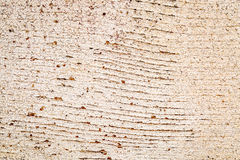 Grunge white painted barn wood texture Royalty Free Stock Photography