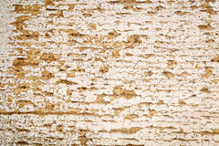 Grunge white painted barn wood texture Royalty Free Stock Image