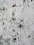 Grunge White Painted Wood Royalty Free Stock Photography
