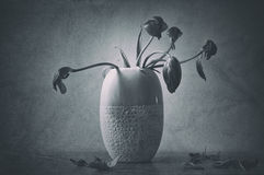 Grunge wilted flowers in vase Royalty Free Stock Photo