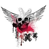 Grunge Wings and Skulls Stock Image