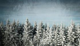 Grunge winter background Royalty Free Stock Image