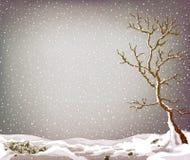 Grunge winter landscape Stock Photo