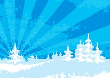 Grunge winter landscape. Vector Illustration of background with snow covered firs at style grunge Royalty Free Stock Photography