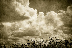 Grunge wizerunek chmurny niebo i trawa, perfect Halloween backgrou ilustracja wektor