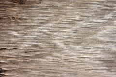 Grunge Wood Royalty Free Stock Photo