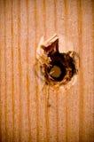 Grunge Wood Background Stock Images