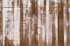 Grunge wood background. With white peeling paint Royalty Free Stock Images