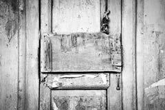 Grunge wood panel on antique door Stock Image