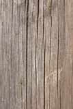 Grunge Wood panels for background Stock Photography