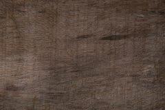 Grunge wood texture background Stock Image