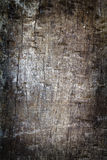 Grunge wood trunk Royalty Free Stock Photography