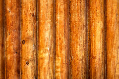 Grunge wooden background Stock Image