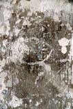 Grunge wooden background. Abstract cracky grunge wooden background royalty free stock photos