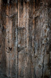 Grunge wooden backgrounds Stock Photography