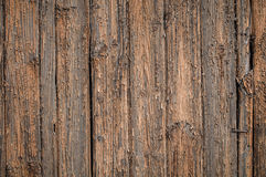Grunge wooden Board Texture Royalty Free Stock Photo