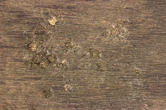 Grunge Wooden Cracked Background or texture with mud. Royalty Free Stock Images