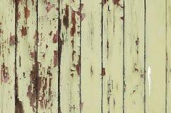 Grunge wooden door texture Stock Photos