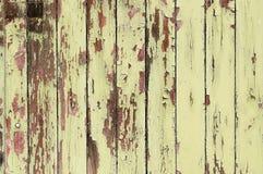 Grunge wooden door texture Royalty Free Stock Photo