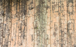 A grunge wooden wall with vignetting and texture Stock Image