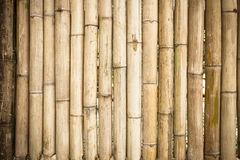 Grunge yellow bamboo background and texture Royalty Free Stock Photo