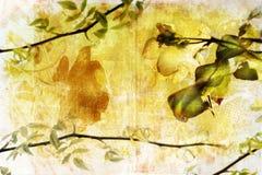 Grunge Zweig-Hintergrundseite Stockbild