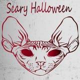 Grungeaffiche - vreselijk Halloween - kwade sfinx Close-up Stock Afbeeldingen