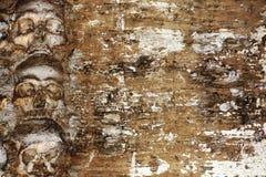 Grungeallhelgonaaftonbakgrund med mänskliga skallar royaltyfri foto