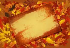 Grunged Fall Frame Stock Photo