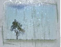 grunged samotny drzewo fotografia royalty free
