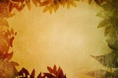 Grungedocument met bladerenvignet Stock Foto's
