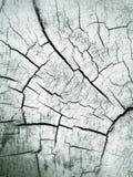 Grungekonstträbakgrund och textur för bakgrund Royaltyfri Fotografi