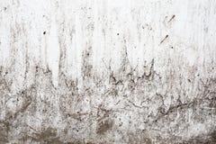Grungeljus - grå textur av en gammal vägg med svartskilsmässor, vit yttersida med fläckar, abstrakt bakgrund Arkivbild