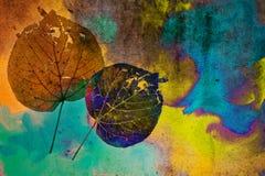 grungemålarfärg Royaltyfri Fotografi