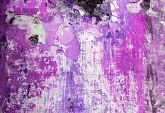grungemålarfärg som skalar den purpura väggen Royaltyfria Bilder