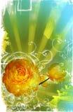 grungesidan rays fläckar Royaltyfria Bilder