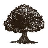 Grungestilkort med trädet royaltyfri illustrationer